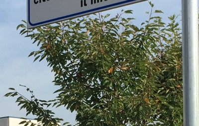 1 Via Castellaneta a Lenta